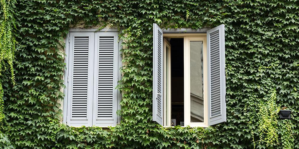 mistralmedia-Maison-et-Jardin-masonry-2