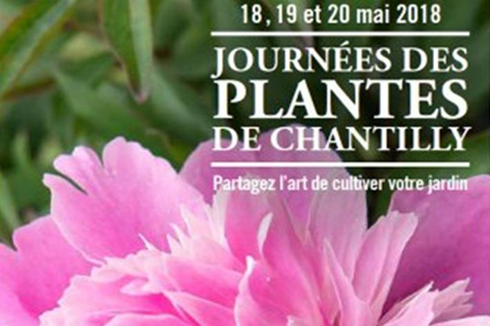 Mistral media - Journee des plantes chantilly ...